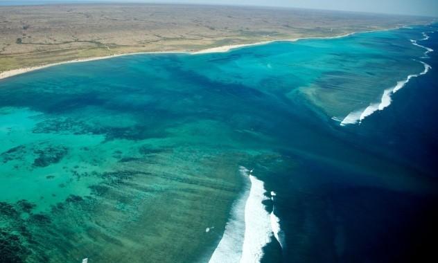 Năm 1987, bờ biển Ningaloo được chuyển thành Vườn Quốc gia Hải dương Ningaloo. Ảnh: Yahoo.