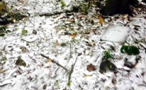 Tuyết phủ kín các mặt đường.
