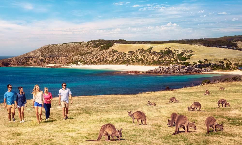 STOKES BAY 2 - 10 bãi biển đẹp nhất Úc để bơi do website du lịch quốc gia Australia.com bình chọn