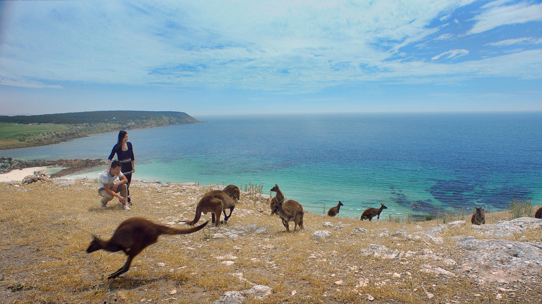 STOKES BAY - 10 bãi biển đẹp nhất Úc để bơi do website du lịch quốc gia Australia.com bình chọn