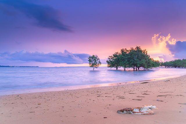 darwin - 10 bãi biển đẹp nhất Úc để bơi do website du lịch quốc gia Australia.com bình chọn