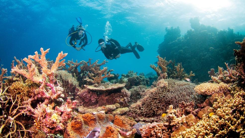 image.adapt .985.HIGH  - Điểm danh những địa điểm đẹp nhất Úc được UNESCO công nhận
