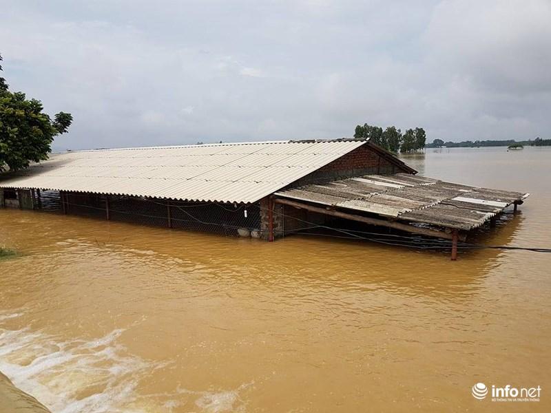 bị vỡ khiến khoảng 200 nhà d ân bị ngập sâu trong biển nước ảnh Infonet - VIETNAM: Toàn cảnh bão hoành hành trong những ngày qua, 43 người chết 34 người mất tích