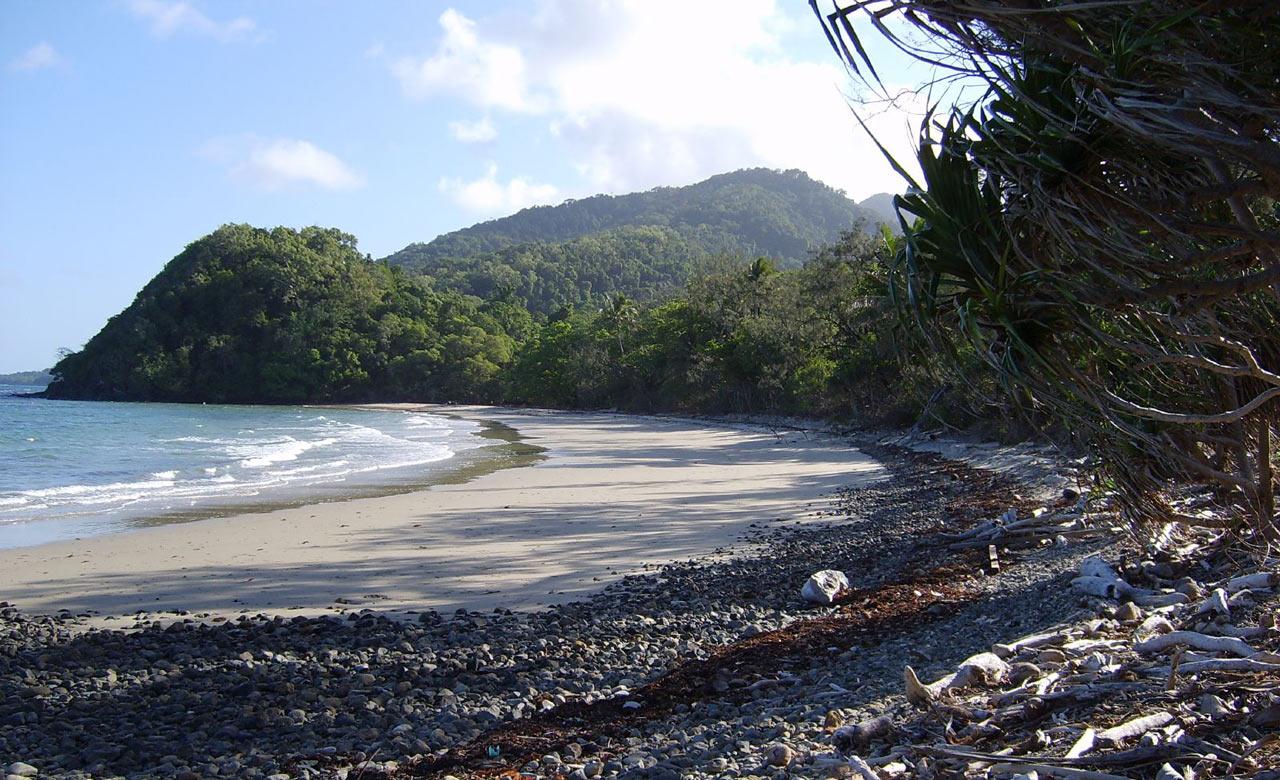 noah beach cape tribulation 1 - 10 bãi biển cắm trại tốt nhất tại Queensland cho mùa xuân này