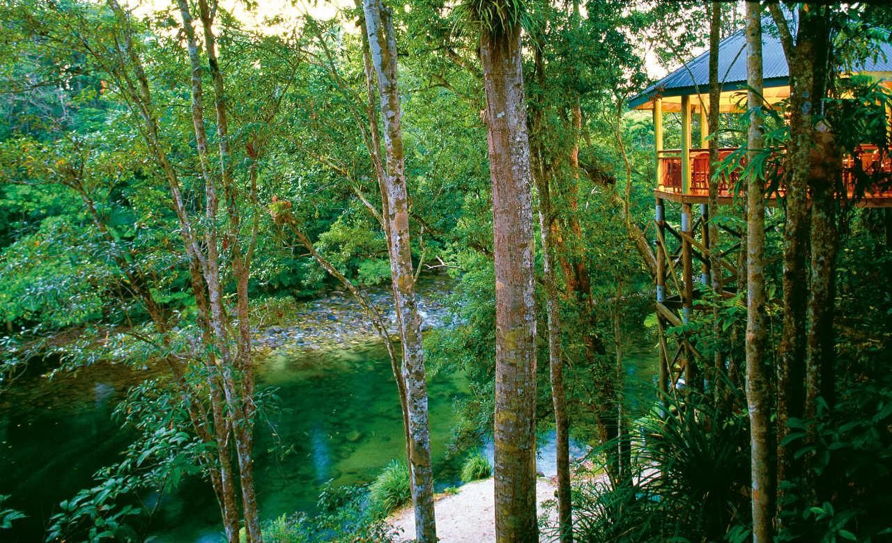 """silky oaks lodge treehouse - Những treehouse gần Sydney khiến bạn chỉ muốn """"đưa nhau đi trốn"""""""