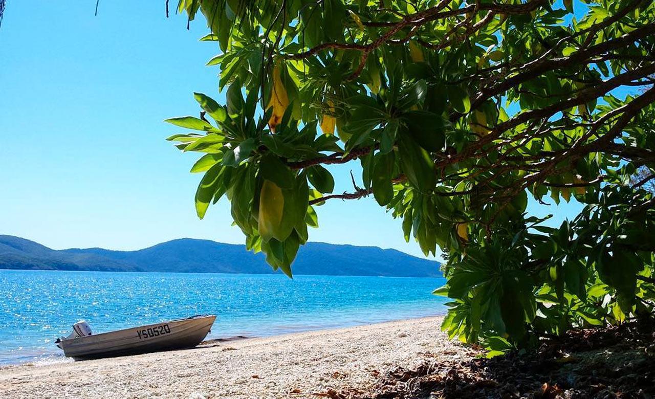 south molle island - 10 bãi biển cắm trại tốt nhất tại Queensland cho mùa xuân này
