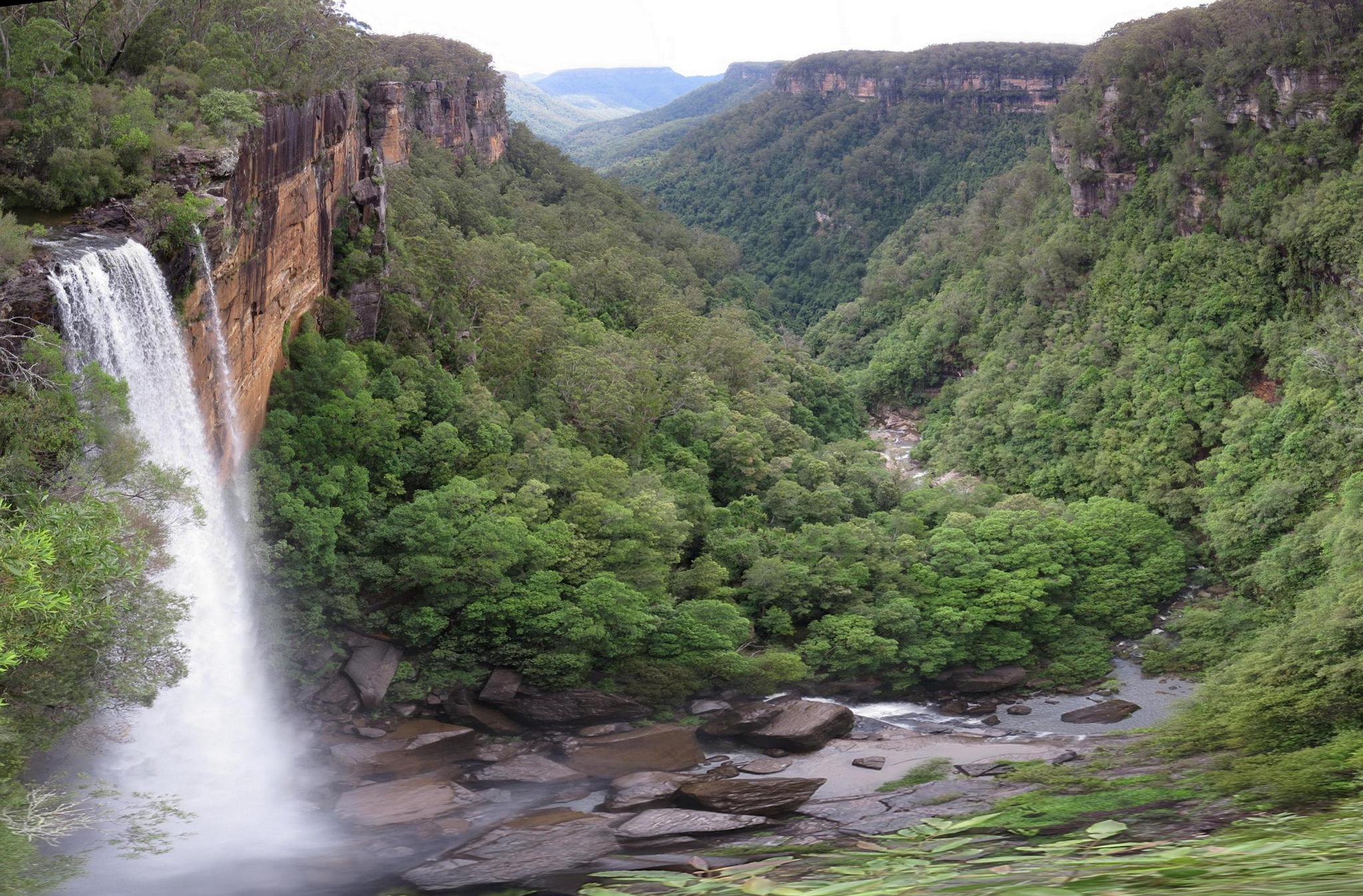 Fitzroy.Falls.original