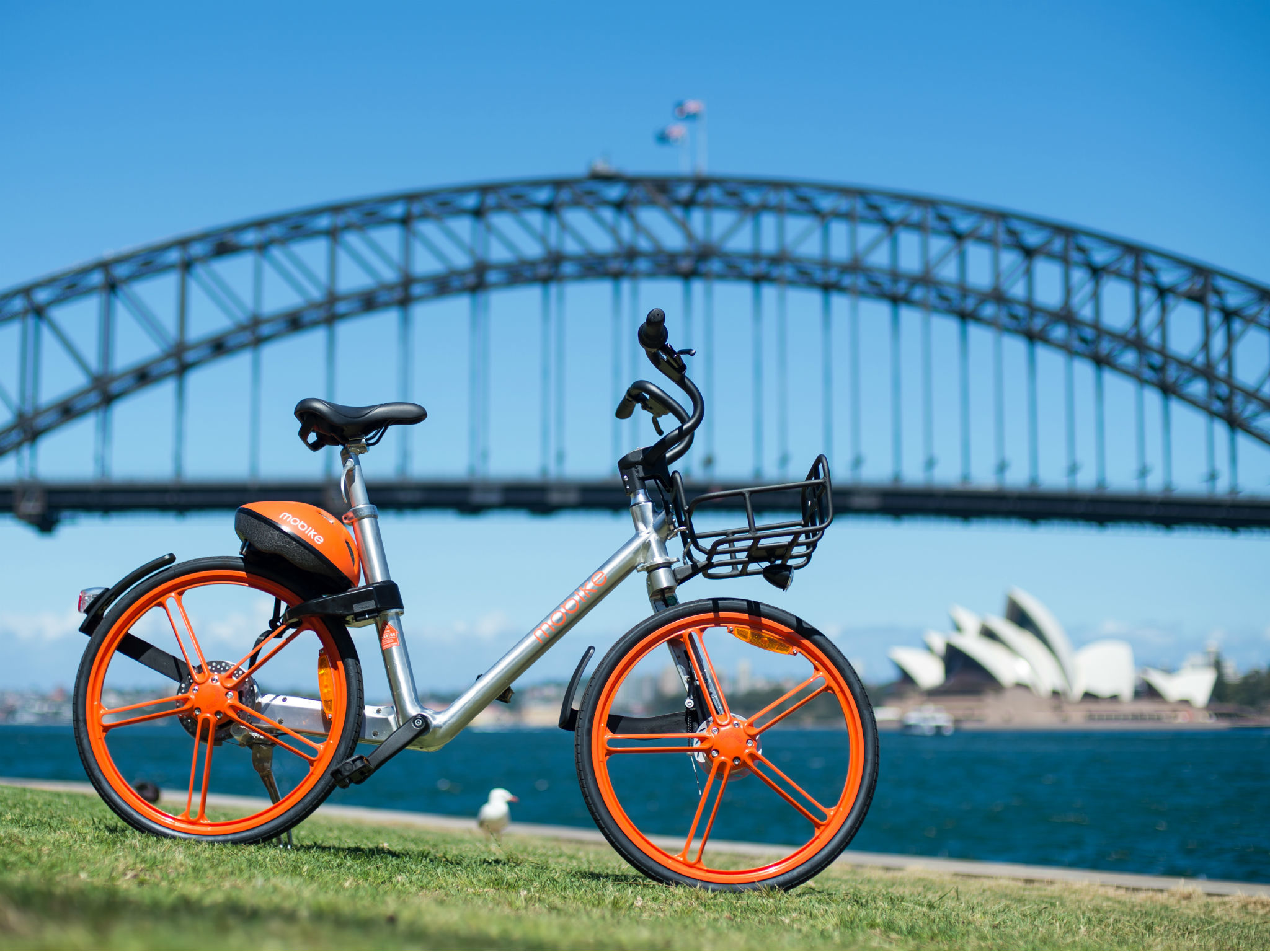 Mobike positioned in front of Sydney Harbour Bridge