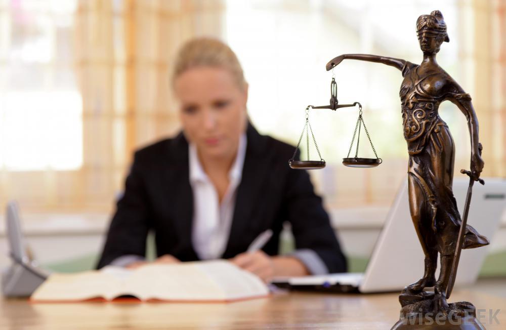 female lawyer reading - Nữ Luật sư Sydney bị trục xuất khỏi ngành do làm giả chứng cứ