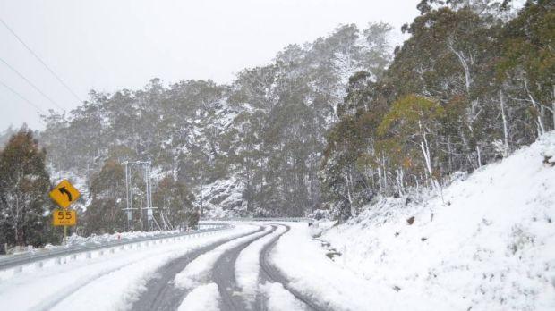 ffrf - Tuyết rơi giữa mùa hè ở Tasmania