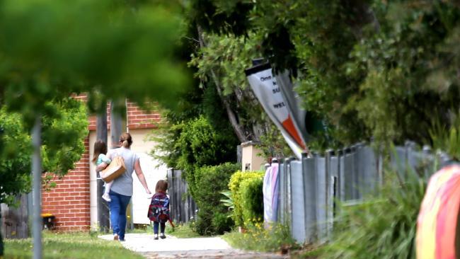 5 - Cảnh sát triệt phá đường dây trồng cần sa quy mô lớn ở Sydney