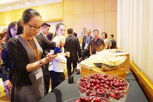 Khoảng 350 tấn Cherry dự kiến sẽ được xuất khẩu vào Vietnam trong năm nay 1 - Khoảng 350 tấn Cherry dự kiến sẽ được xuất khẩu vào Vietnam trong năm nay