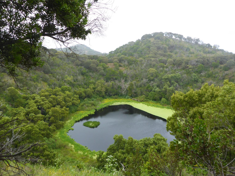 """Tower Hill Wildlife Reserve - Top 5 địa danh """"bí ẩn"""" ở Victoria bạn cần check-in ngay"""