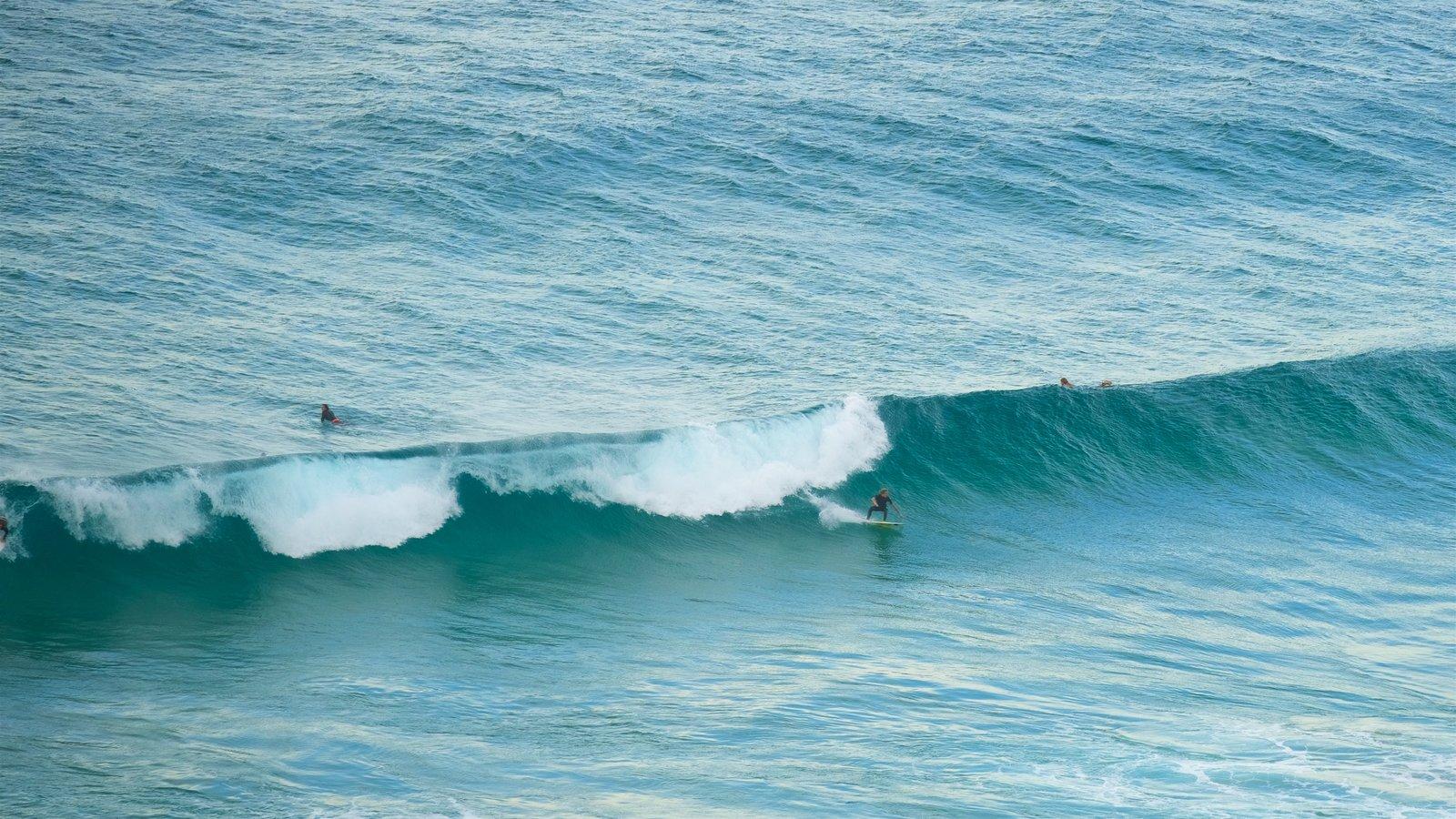 tallow beach surf