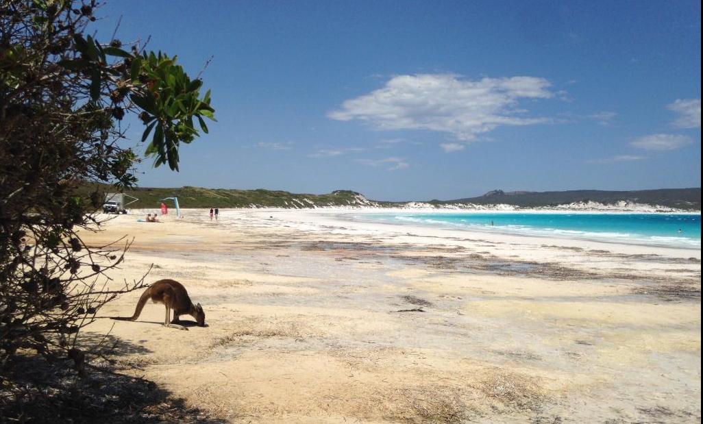 1111 - Khám phá TOP 10 bãi biển đẹp nhất Tây Úc