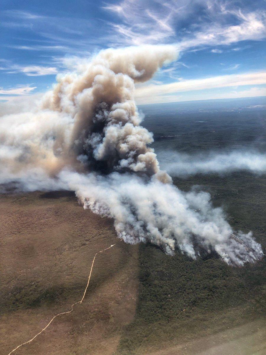 Cháy lớn tại Sydneys Royal National Park đã giảm vì đội cứu hỏa chiến đấu quyết liệt 1 - Cháy lớn tại Sydney's Royal National Park đã giảm vì đội cứu hỏa chiến đấu quyết liệt