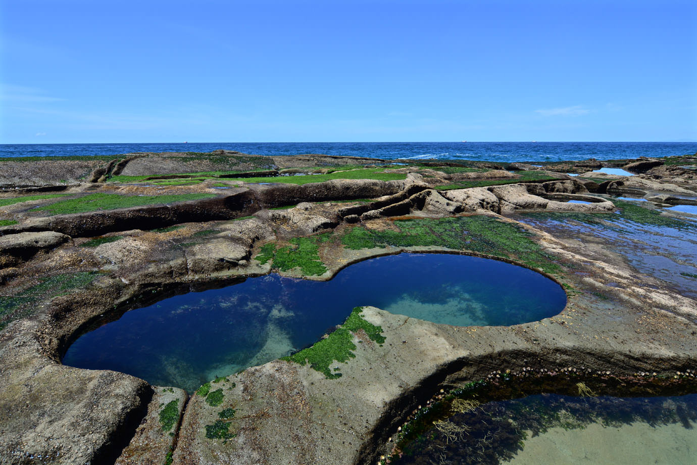 figure 8 pools3 - Hướng dẫn chi tiết để đến hồ bơi số 8 ở Sydney