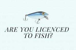 yH5BAEAAAAALAAAAAABAAEAAAIBRAA7 - Những điều cần biết về giấy phép câu cá (Fishing licence) ở Victoria