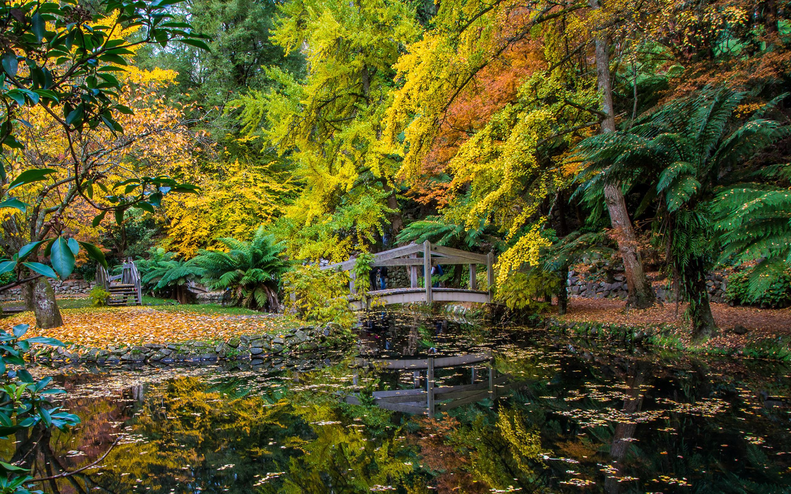 Alfred Nicholas Memorial Gardens - 8 khu vườn tuyệt đẹp ít người biết đến ở Melbourne