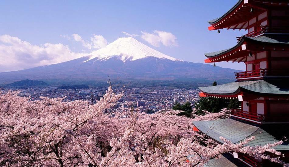 Cách nộp visa du lịch Nhật Bản từ Úc - Cách nộp visa du lịch Nhật Bản từ Úc