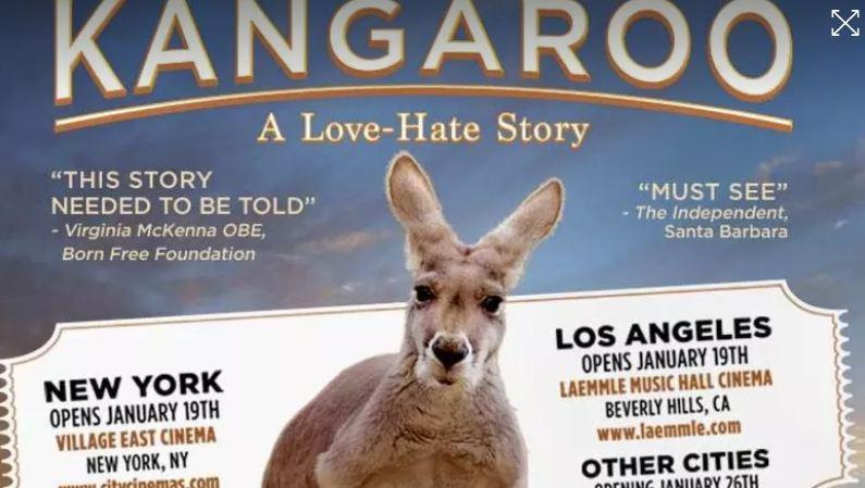 """chinh phu uc khuyen khich thit kangaroo trong nam 2018 3 - Chính phủ Úc khuyến khích """"ăn thịt"""" thêm Kangaroo trong năm 2018"""