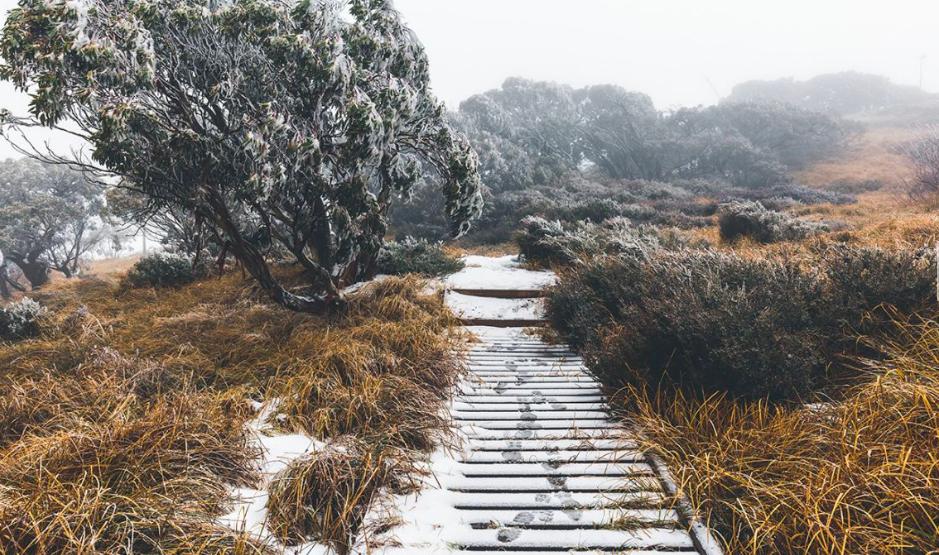 Ảnh chụp Màn hình 2018 05 11 lúc 12.01.45 - Không khí lạnh và mưa trên khắp nước Úc, nhiều nơi dưới 0 độ C cuối tuần này