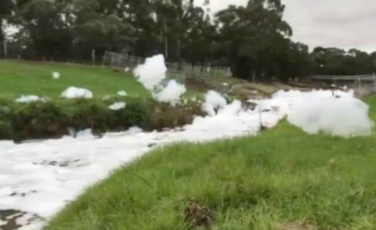 dandenong creek pollution foams3 - Melbourne: Cảnh cáo người dân xả thải bọt ra Dandenong Creek
