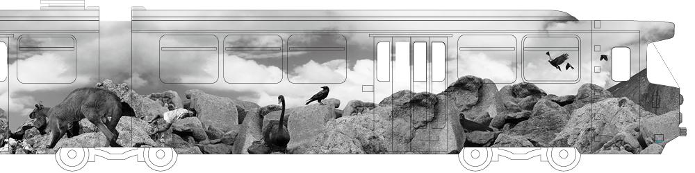 Hayley Millar-Baker Melbourne Art Trams