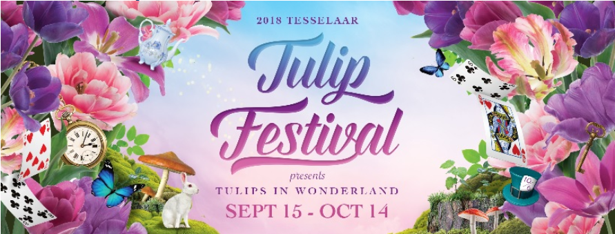 Capture5 - Lễ hội hoa Tullip lớn nhất Melbourne năm 2018 có gì?