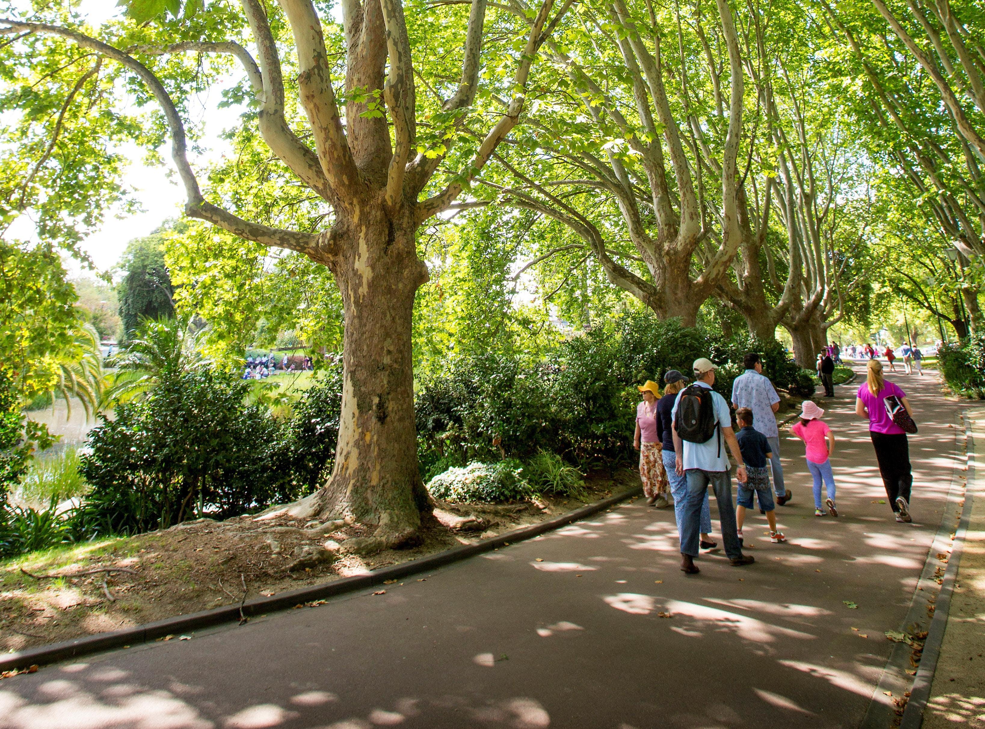 Healthy Cities Urban Walks melbourne
