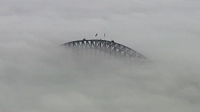 Sydney fog causes widespread flight delays for multiple airlines